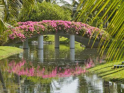 Gardens - Alternate View