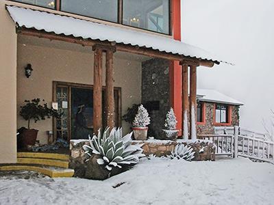 Exterior - Snowy