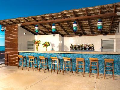 Bar Manatees