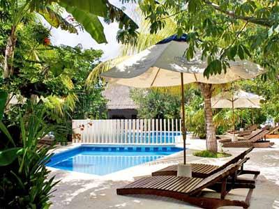 Pool - Lounge Chairs
