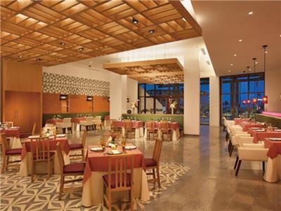 Restaurante Tres Colores Dreams Playa Mujeres Golf and Spa Resort
