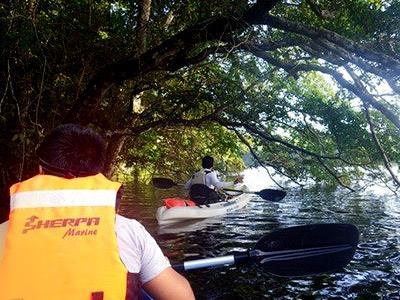 Kayak in Chakambakam