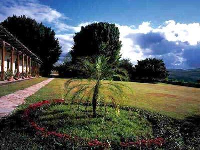 Jardín - Tercer Ángulo