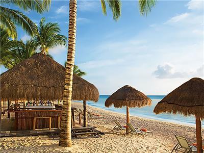 Coconuts beach bar