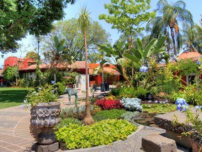 Ceiba Garden