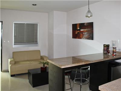 Suite with Living Area and Kitchenette