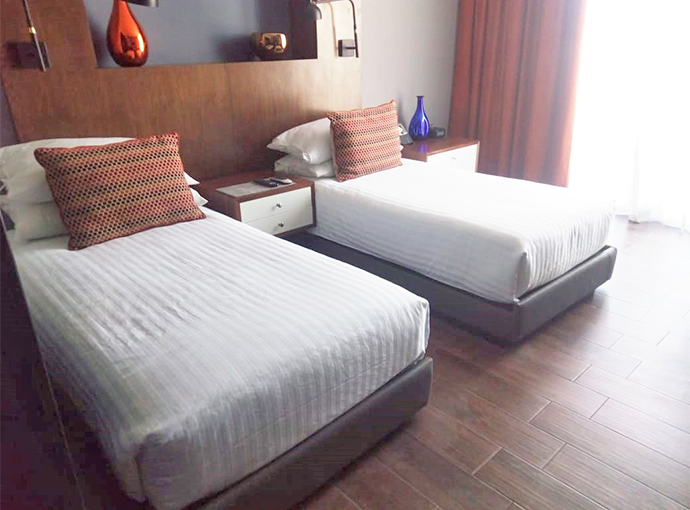 Deluxe Double Single Room