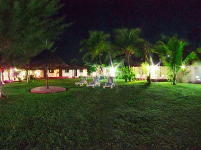 Garden - Night View