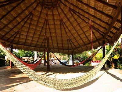 Beach Club - Hammocks