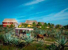Sotuta de Peón Hacienda Viva Village Resort