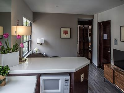 Executive Suite - Kitchenette