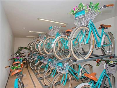 Renta de Bicicleta