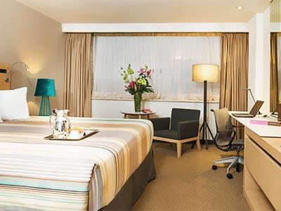 Deluxe Grand Single Room