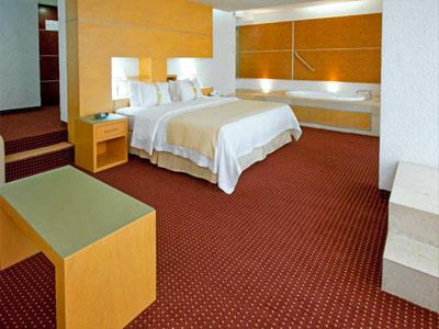 Junior Suite con Cama King Fumadores