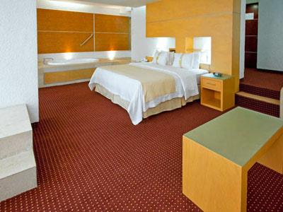 Junior Suite Cama King No Fumadores