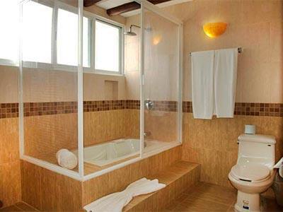 Suite con Terraza Privada - Baño