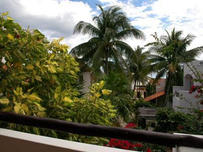 Garden View - Terrace