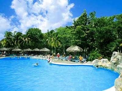 Pool - Vegetation
