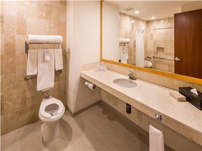Deluxe - Handicapped bathroom