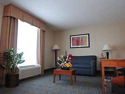 Suite King Nonsmoking   Living Room   Hampton Inn By Hilton Queretaro  Tecnologico   Queretaro