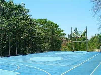 Multipurpose court