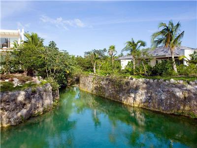 Cenote View