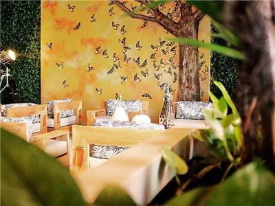 Elefante Lounge