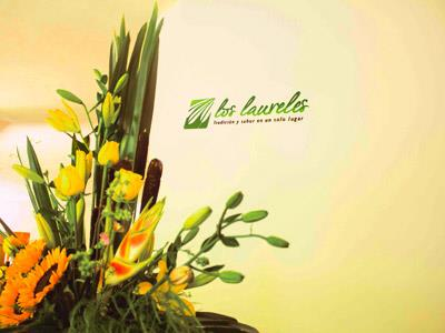 Los Laureles - Vista Alternativa
