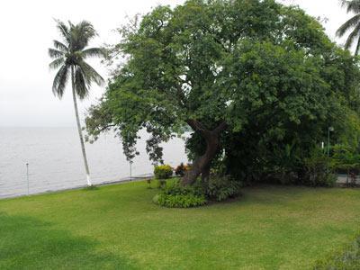 Jardín - Vista a la Laguna