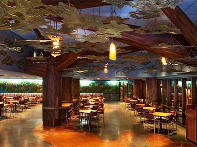 Restaurante The Mara Disney's Animal Kingdom Villas Jambo