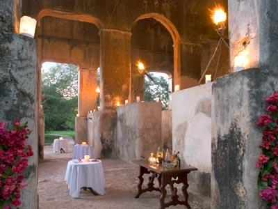 Romantic Dinner - Another View