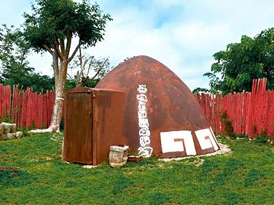 Temazcal Experience and Standard