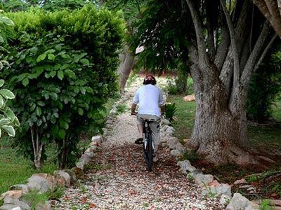 Rides Bikes